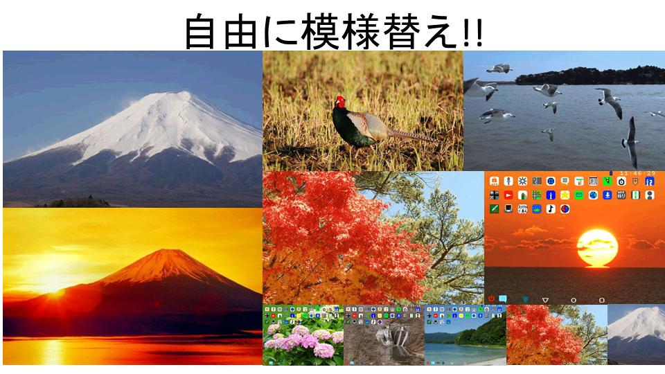 http://petitverse.hosiken.jp/community/petitcom/diary/upl/1540115484-1.png
